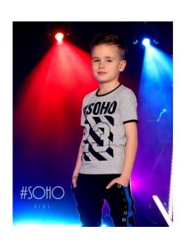 #Soho marškinėliai su printu berniukui. Spalva pilka